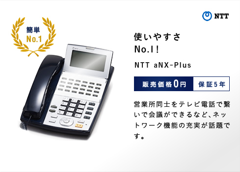 使いやすさNo.1! NTT aNX-Plus